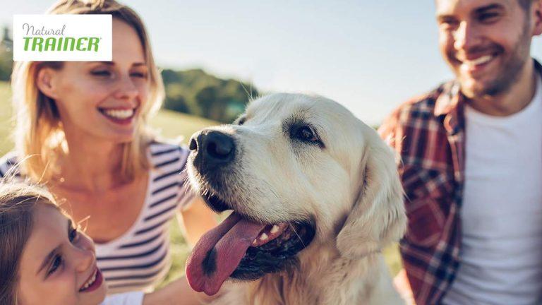 Natural Trainer, ad ogni cane la sua dieta